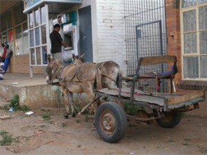 Donkey cart parked by ATM